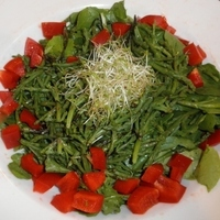 Sea Beans and Arugula Salad