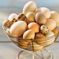 All About Eggs and their Benefits