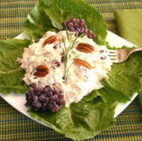 Recipe of the Week - Chicken Salad