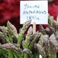 Yakima Asparagus Quiche