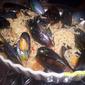 Dorm Favorites Revisited: Fiery Miso Ramen w/Mussels