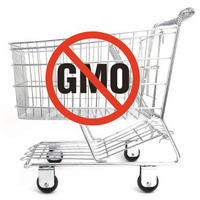 What's on your food label? Big Food Biz keeps you in the dark!
