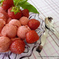 ice cream STRAWBERRY BANANA LIMONCELLO