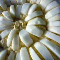 Italian APPLE butter cake torte