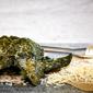 Garlic Parmesan Kale Chips