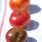 Eatwell Recipe 32: Heirloom Tomato Sauce With Basil & Italian Sausage