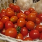 Cherry/Grape Tomatoes