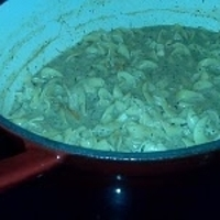 Mrs. B's Shaker Chicken Noodle Soup