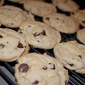 Chocolate Chip Vanilla Pudding Cookies