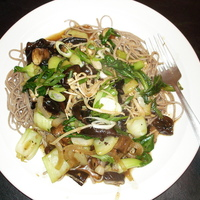 Mushroom Medley and Baby Bok Choy w/ Black Bean Sauce and Soba Noodles ...