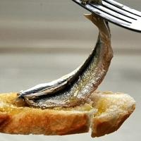 Boquerones en vinagre or marinated anchovies