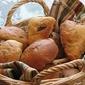 Dried Fruit Buns