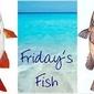Fish Marinades