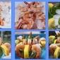 Italian Style Shrimp Cocktail Mom's Recipe