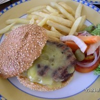 Beef or Chicken burger with choice of Swiss cheese