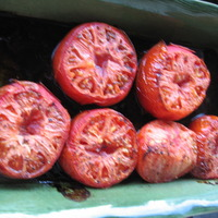 Roasted Carmelized Tomatoes