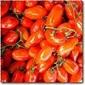 Pomodoro Sauce