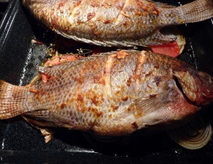 Fish Tahini