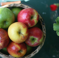 Foodie Friday – Apple Cobbler Goodness & Easy Apple Pie
