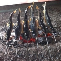 trote giapponesi cotte con spiedi su carbone