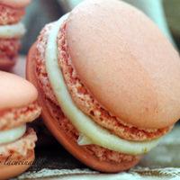 Rosa, rosae: macarons con ganasce di cioccolato bianco e zenzero
