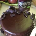 Chocolate Boston Cream Cake