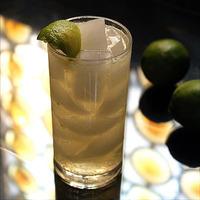 Vodka & Ginger Beer- A Mule is Born