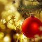 The Whole Christmas Feast!