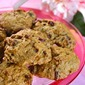 Organic Persimmon Cookies and Bars