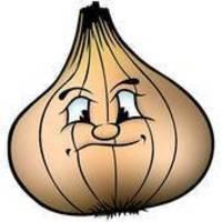 Curried Onion salad
