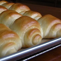 THRIVE Lion House Rolls