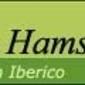Hams from Spain