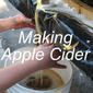 Making Apple Cider