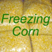 The Best, Fresh, Frozen Corn