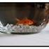 Fisch Foods