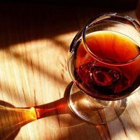 Homemade Wine Recipes Club