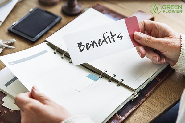 cannabis wellness benefits