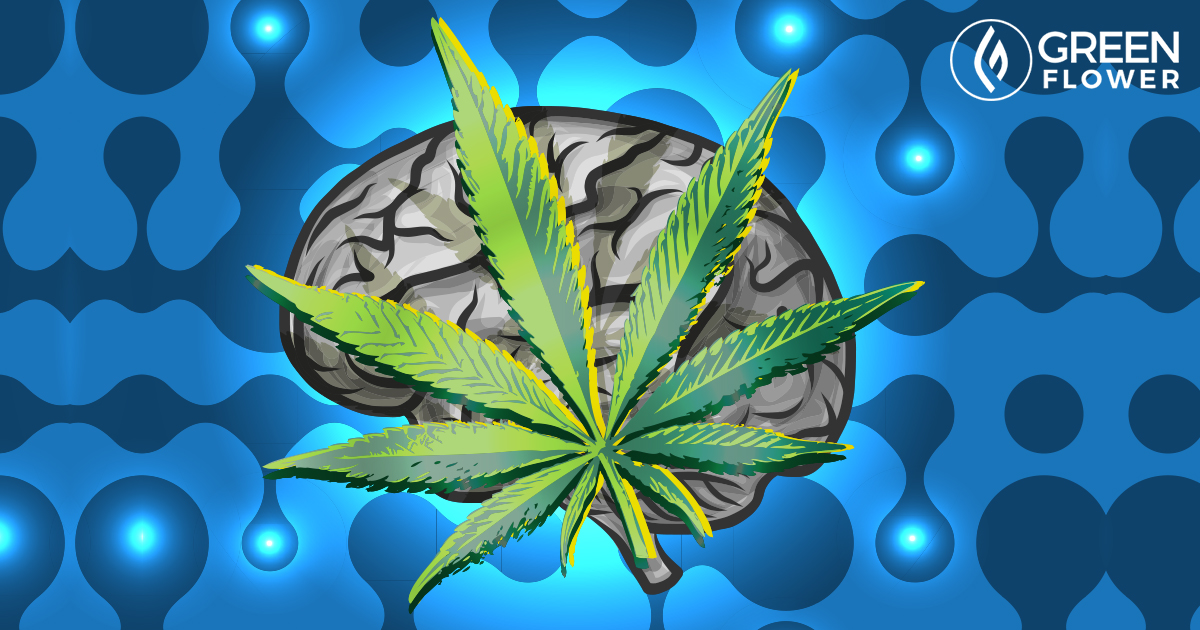 Cannabis for Brain Cancer: New Science Shows Serious Potential