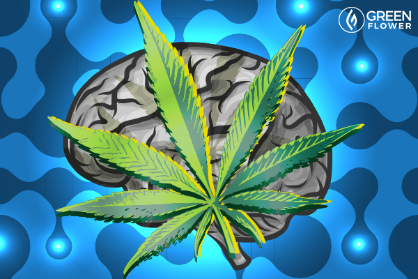 Does cbd oil help with brain tumors