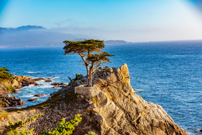 Find out what made our list of the best bed and breakfasts in Monterey California