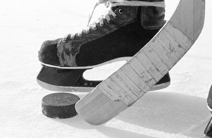 Enter CaniBrands - Feel Amazing Sweepstakes for a free trip to a hockey game in Phoenix