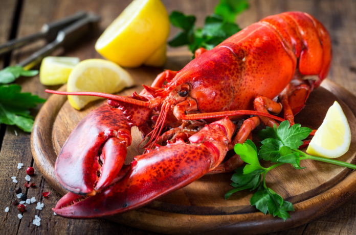 Discount ticket to the Great American Lobster Fest In Detroit, Michigan