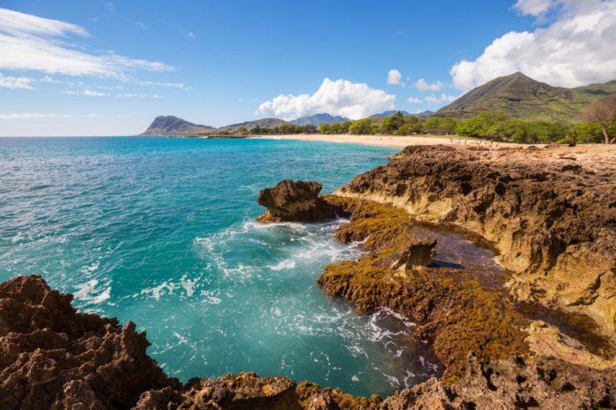 Enter Blue Lizard Australian Sunscreen - Win A Summer Adventure Sweepstakes for a free trip to Oahu, Hawaii
