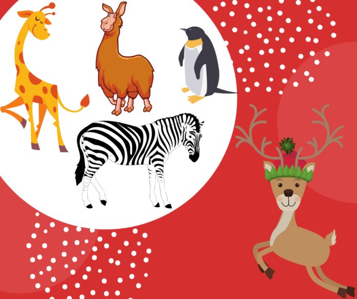 Coupon for Jungle Bells holiday lights display at Animal Adventures in Binghamton New York area