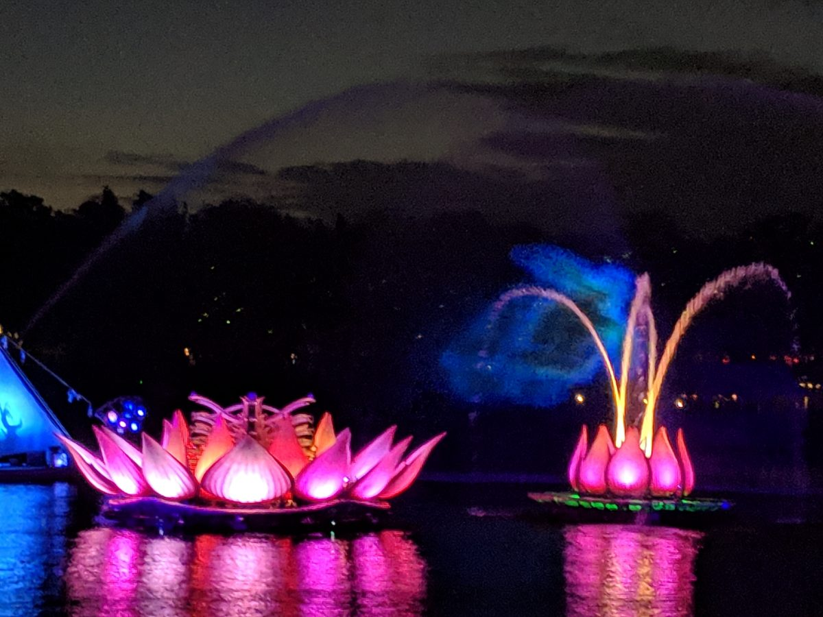 Rivers of Light is a great nighttime show at Disney's Animal Kingdom theme park & you should definitely see it