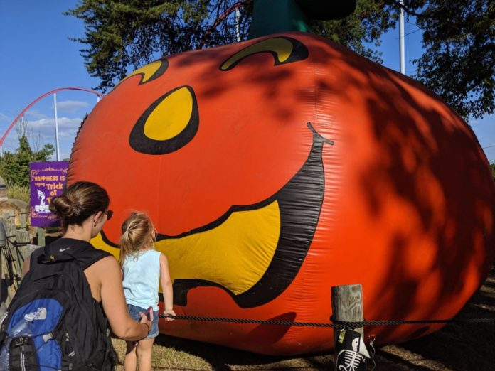 Take a virtual tour of Great Pumpkin Fest, Carowinds Halloween events for kids