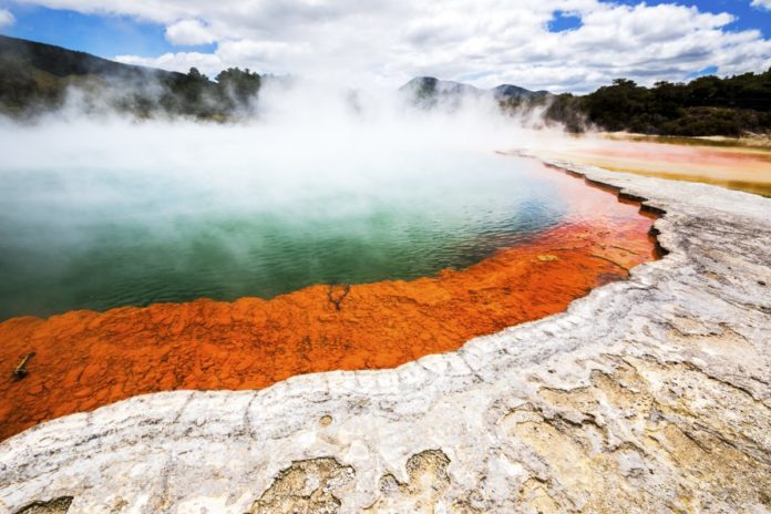 Find out what the best hotels in Rotorua, New Zealand are & how to book them for a great rate