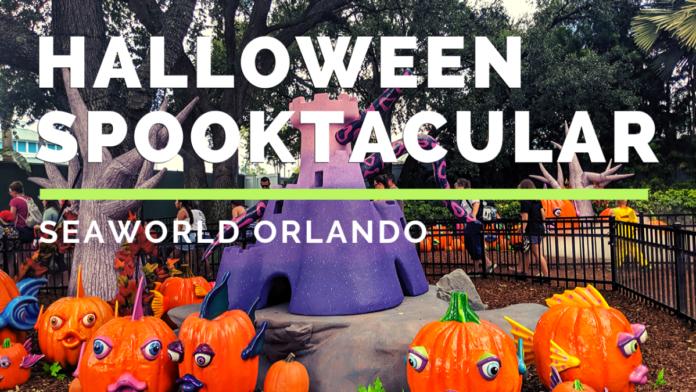A virtual tour of SeaWorld's Halloween Spooktacular event in Orlando, Florida
