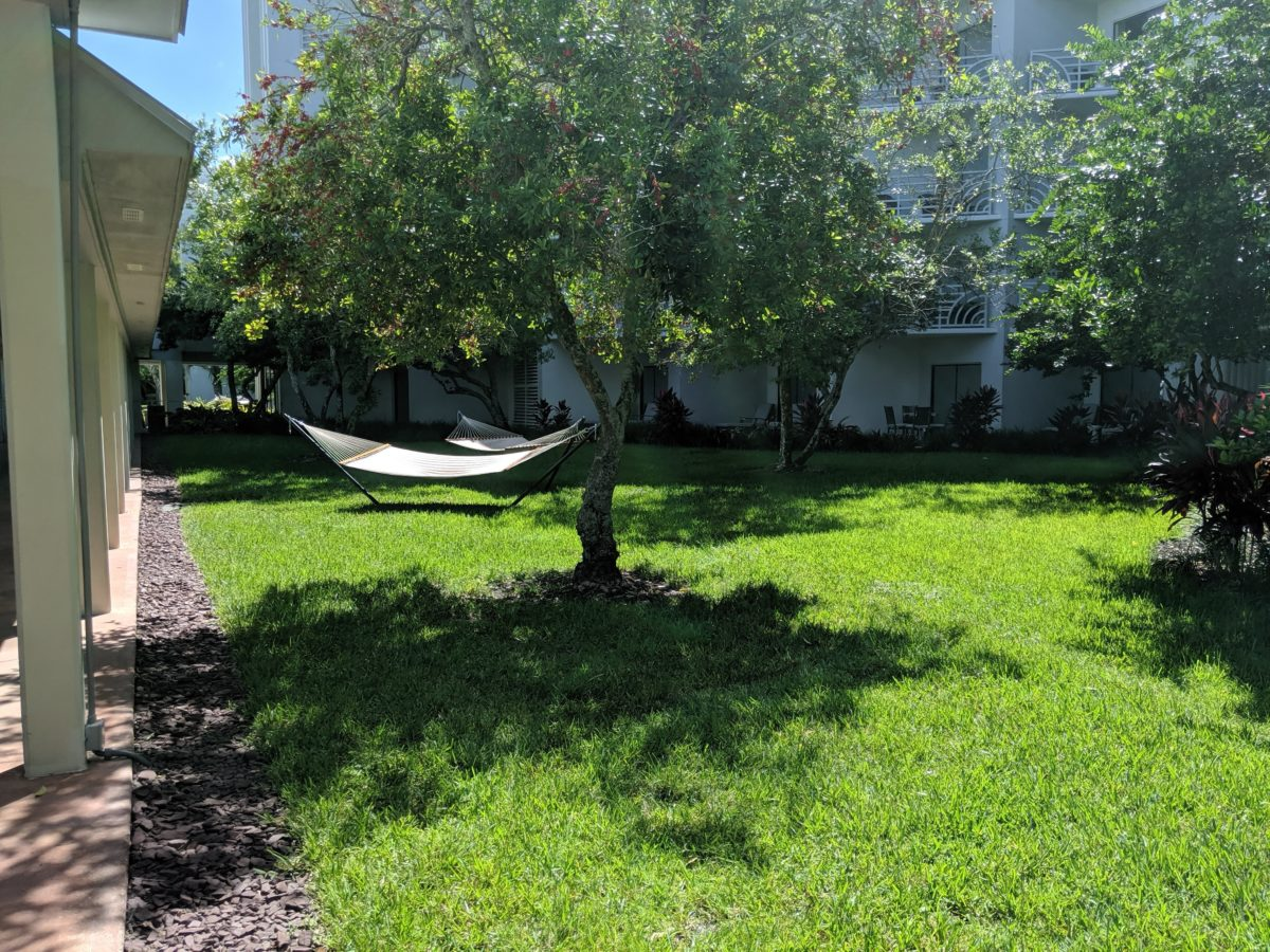 Relax in the hammocks outdoors at Hilton Orlando Buena Vista Palace Disney Springs