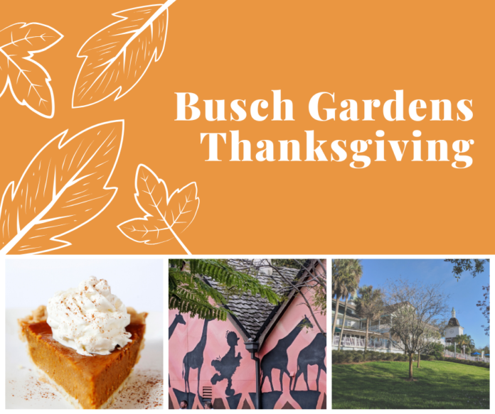 Why you should spend Thanksgiving at Busch Gardens Tampa Bay theme park